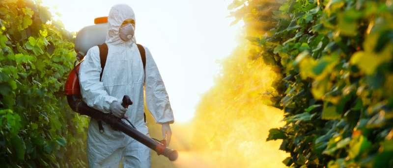 lawn Pest Control in Morovis, PR 00687