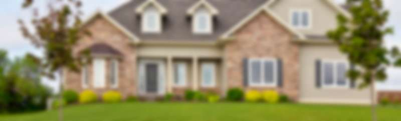 lawn Pest Control in Westfield, MA 01086