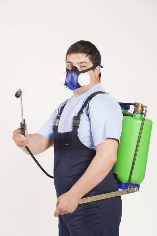 24hour Pest Control in Guaynabo, PR 00970