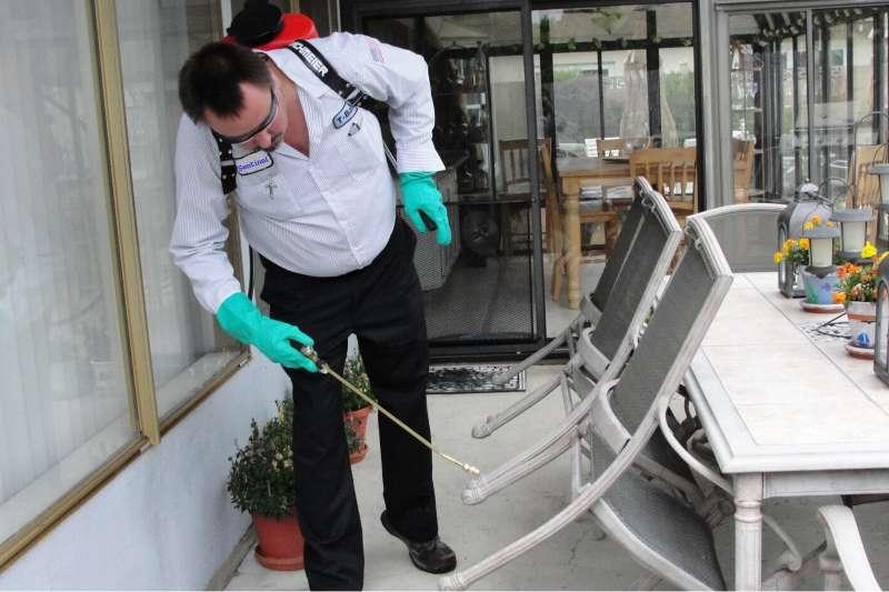 lawn Pest Control in South Hadley, MA 01075