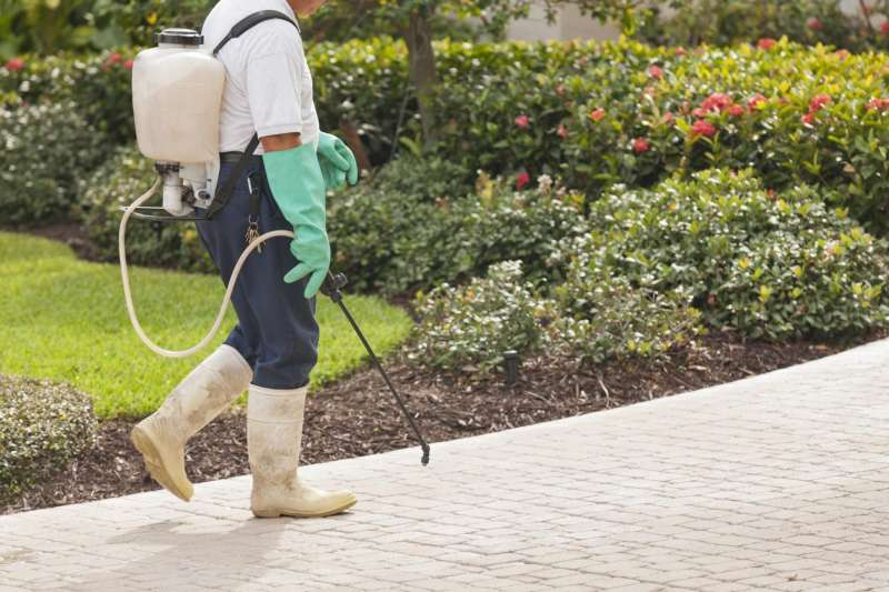 Lawn Pest Control in Humacao, PR 00792