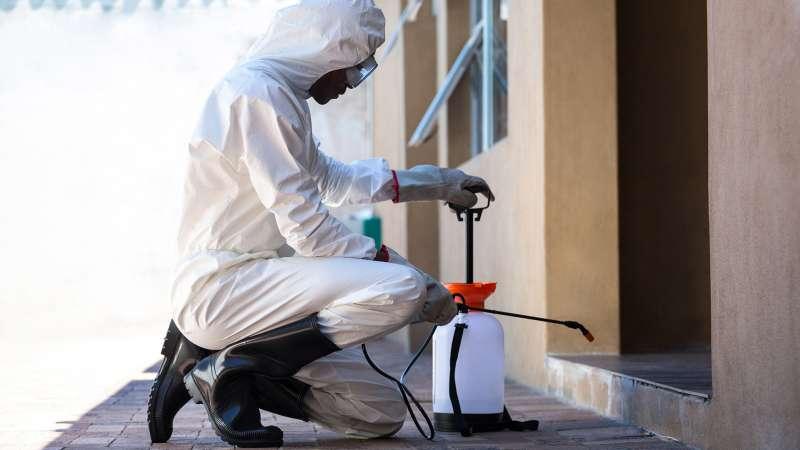 Lawn Pest Control in Dorado, PR 00646
