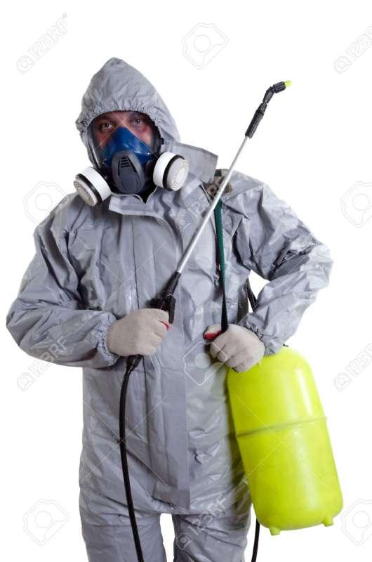 24hr. Pest Control in Arecibo, PR 00614