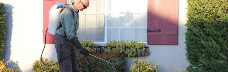 lawn Pest Control in Kingshill, VI 00851