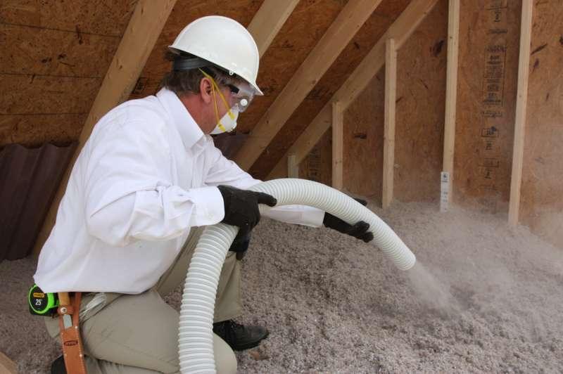 24hour Pest Control in Las Piedras, PR 00771