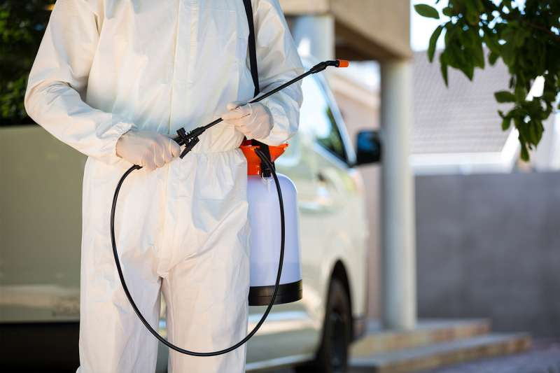 24 hr Pest Control in Greenfield, MA 01301
