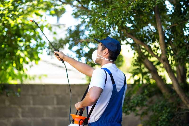 24hr. Pest Control in San Juan, PR 00915
