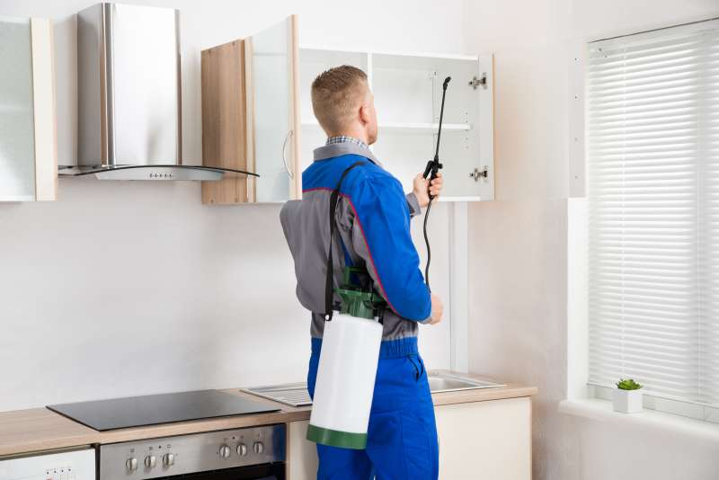 24hour Pest Control in Cayey, PR 00737