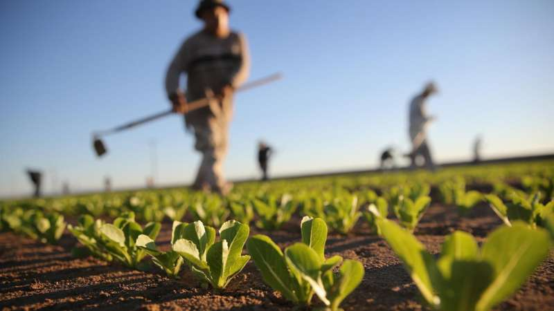 24 hr Pest Control in Chicopee, MA 01022