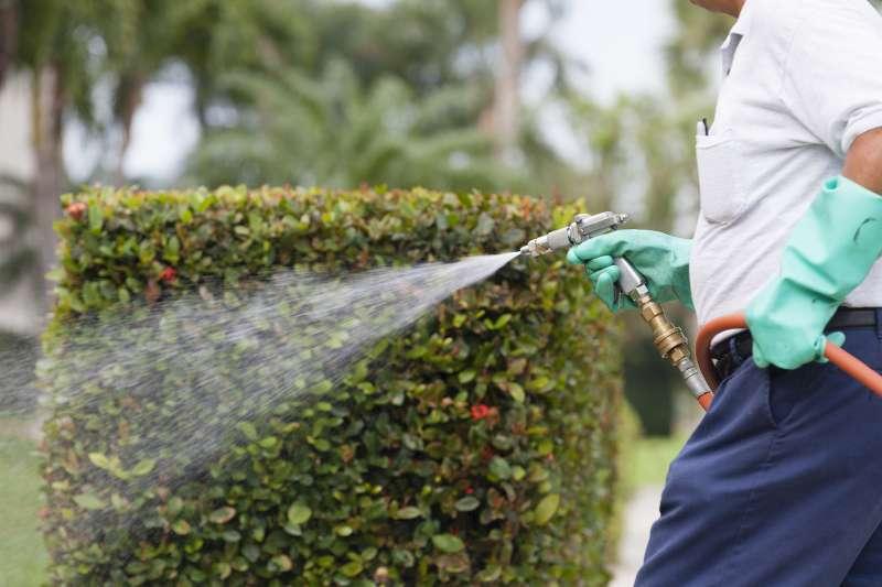 24hr Pest Control in Ashfield, MA 01330
