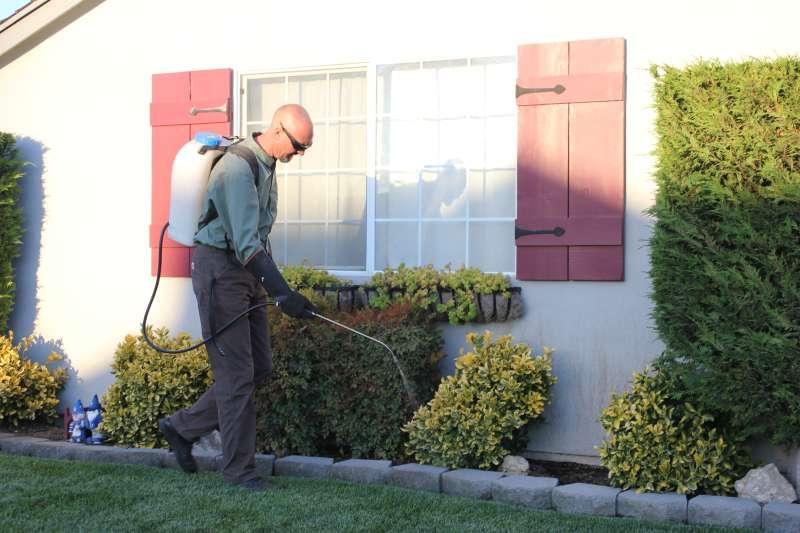 24 hour Pest Control in Aguadilla, PR 00603