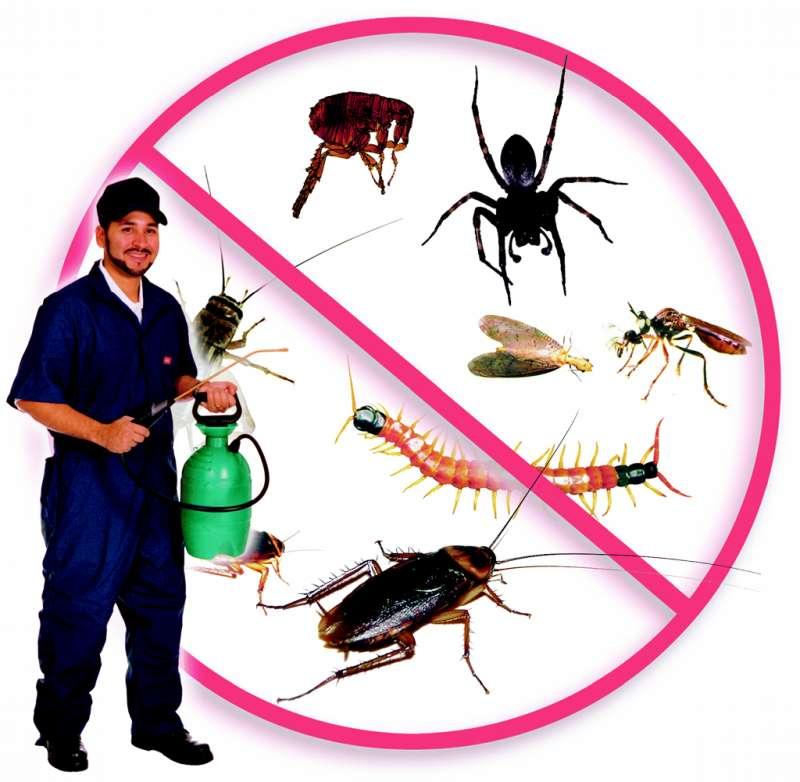 24 hr. Pest Control in San Juan, PR 00928